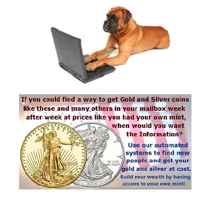 Dog Search Cryptocurrency